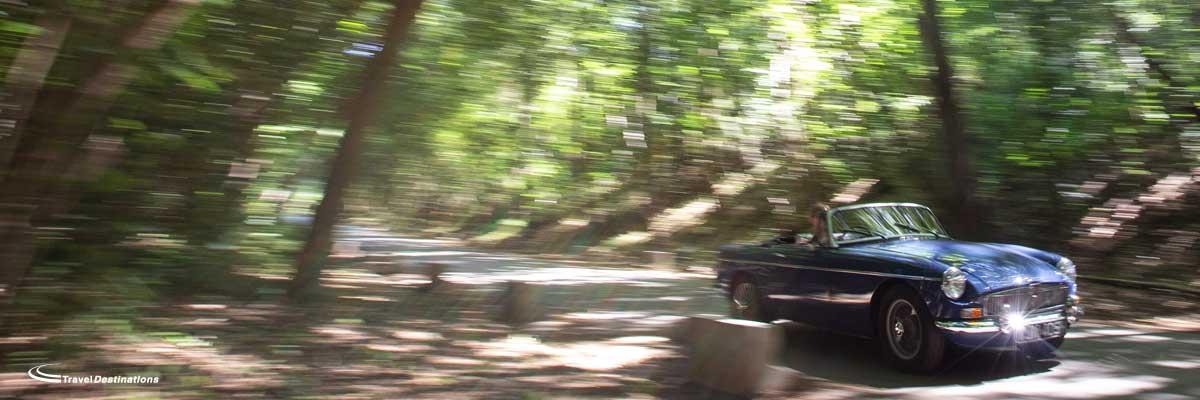 MG Ardennes 2020 slide 1